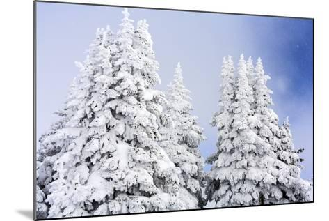 A Clearing Winter Storm In Winter In Vail, Colorado-Jay Goodrich-Mounted Photographic Print