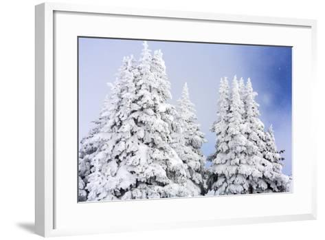 A Clearing Winter Storm In Winter In Vail, Colorado-Jay Goodrich-Framed Art Print
