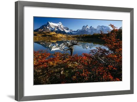 Lenga Beach In Peak Autumn Foliage Is Reflected In A Laguna In Torres Del Paine NP, Chile-Jay Goodrich-Framed Art Print