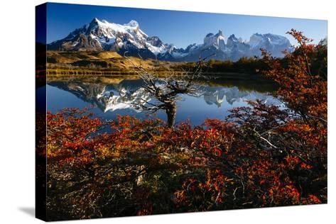 Lenga Beach In Peak Autumn Foliage Is Reflected In A Laguna In Torres Del Paine NP, Chile-Jay Goodrich-Stretched Canvas Print