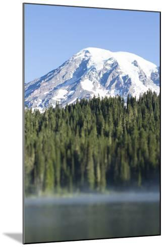 Reflection Lake. Mt. Rainier National Park, WA-Justin Bailie-Mounted Photographic Print