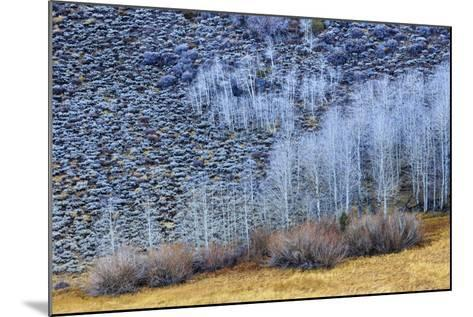 Conway Summit Along Highway 395 In The Eastern Sierras Northern California Near Mono Lake-Jay Goodrich-Mounted Photographic Print