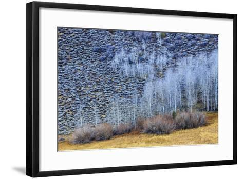 Conway Summit Along Highway 395 In The Eastern Sierras Northern California Near Mono Lake-Jay Goodrich-Framed Art Print