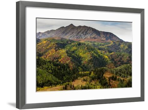 Uinta NF, Mt Nebo Loop Scenic Byway, Utah: Byway Corsses Uinta NF Between Nephi And Payson, Utah-Ian Shive-Framed Art Print