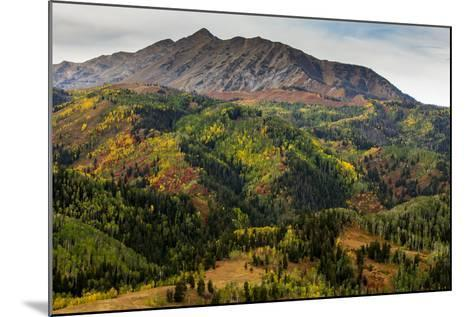 Uinta NF, Mt Nebo Loop Scenic Byway, Utah: Byway Corsses Uinta NF Between Nephi And Payson, Utah-Ian Shive-Mounted Photographic Print