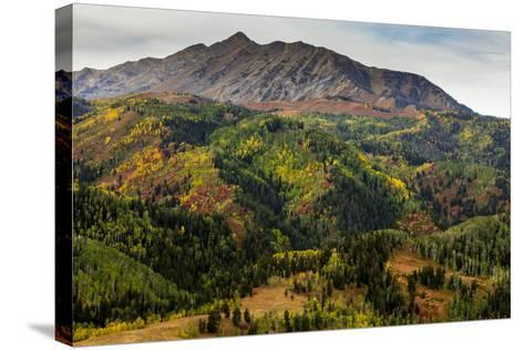 Uinta NF, Mt Nebo Loop Scenic Byway, Utah: Byway Corsses Uinta NF Between Nephi And Payson, Utah-Ian Shive-Stretched Canvas Print
