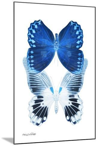 Miss Butterfly Duo Memhowqua II - X-Ray White Edition-Philippe Hugonnard-Mounted Photographic Print