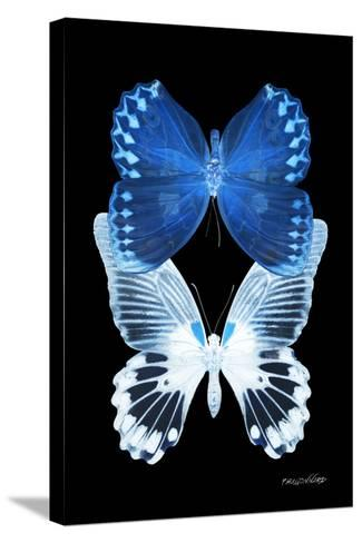 Miss Butterfly Duo Memhowqua II - X-Ray Black Edition-Philippe Hugonnard-Stretched Canvas Print