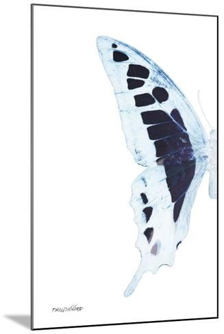Miss Butterfly Cloanthus - X-Ray Left White Edition-Philippe Hugonnard-Mounted Photographic Print
