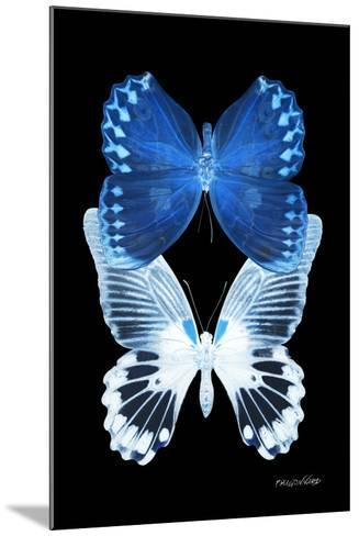 Miss Butterfly Duo Memhowqua II - X-Ray Black Edition-Philippe Hugonnard-Mounted Photographic Print