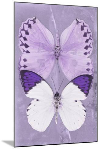 Miss Butterfly Duo Formoia II - Mauve-Philippe Hugonnard-Mounted Photographic Print