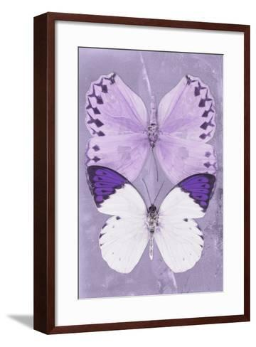 Miss Butterfly Duo Formoia II - Mauve-Philippe Hugonnard-Framed Art Print