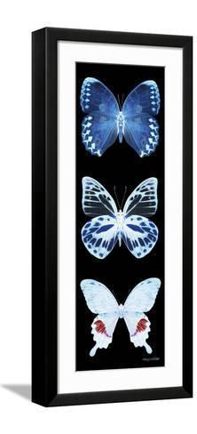 Miss Butterfly X-Ray Black Pano II-Philippe Hugonnard-Framed Art Print