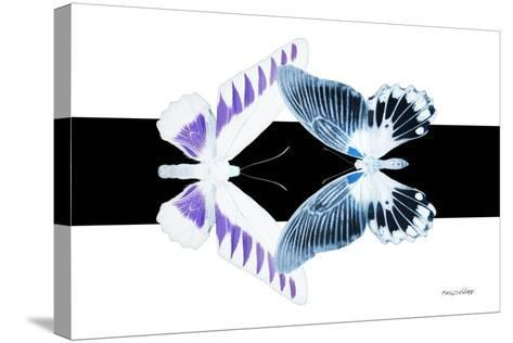 Miss Butterfly Duo Brookagenor - X-Ray B&W Edition-Philippe Hugonnard-Stretched Canvas Print