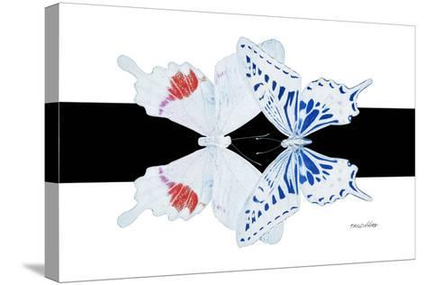 Miss Butterfly Duo Parisuthus - X-Ray B&W Edition-Philippe Hugonnard-Stretched Canvas Print