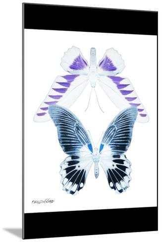 Miss Butterfly Duo Brookagenor II - X-Ray B&W Edition-Philippe Hugonnard-Mounted Photographic Print