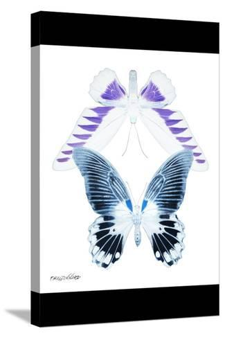 Miss Butterfly Duo Brookagenor II - X-Ray B&W Edition-Philippe Hugonnard-Stretched Canvas Print