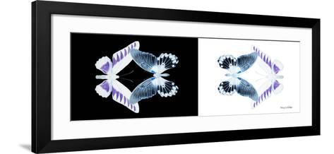 Miss Butterfly Duo Brookagenor Pan - X-Ray B&W Edition-Philippe Hugonnard-Framed Art Print