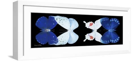 Miss Butterfly X-Ray Duo Black Pano VII-Philippe Hugonnard-Framed Art Print