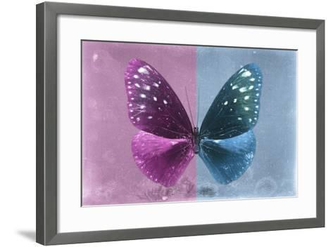 Miss Butterfly Euploea - Hot Pink & Blue-Philippe Hugonnard-Framed Art Print