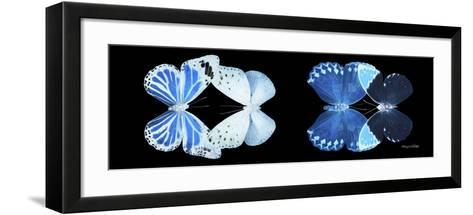 Miss Butterfly X-Ray Duo Black Pano X-Philippe Hugonnard-Framed Art Print