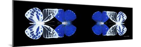 Miss Butterfly Duo Priopomia Pan - X-Ray Black Edition II-Philippe Hugonnard-Mounted Photographic Print