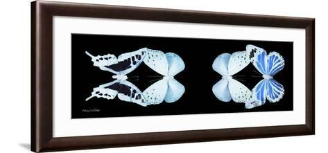 Miss Butterfly X-Ray Duo Black Pano XIII-Philippe Hugonnard-Framed Art Print