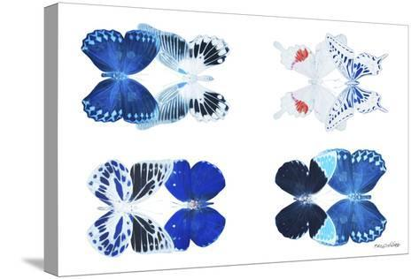 Miss Butterfly X-Ray Duo White III-Philippe Hugonnard-Stretched Canvas Print