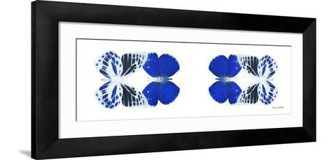 Miss Butterfly Duo Priopomia Pan - X-Ray White Edition II-Philippe Hugonnard-Framed Art Print