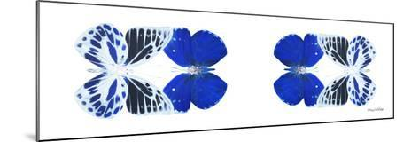 Miss Butterfly Duo Priopomia Pan - X-Ray White Edition II-Philippe Hugonnard-Mounted Photographic Print