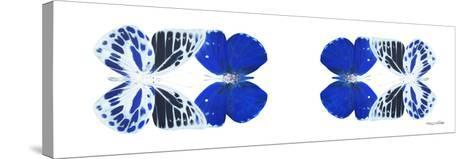 Miss Butterfly Duo Priopomia Pan - X-Ray White Edition II-Philippe Hugonnard-Stretched Canvas Print