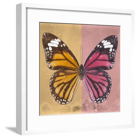 Miss Butterfly Genutia Sq - Honey & Hot Pink-Philippe Hugonnard-Framed Art Print