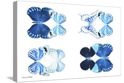 Miss Butterfly X-Ray Duo White IV-Philippe Hugonnard-Stretched Canvas Print