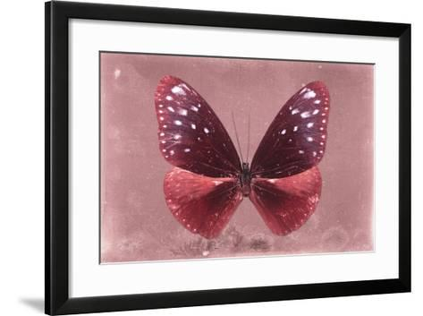 Miss Butterfly Euploea - Red-Philippe Hugonnard-Framed Art Print