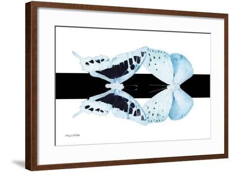 Miss Butterfly Duo Cloanthaea - X-Ray B&W Edition II-Philippe Hugonnard-Framed Art Print
