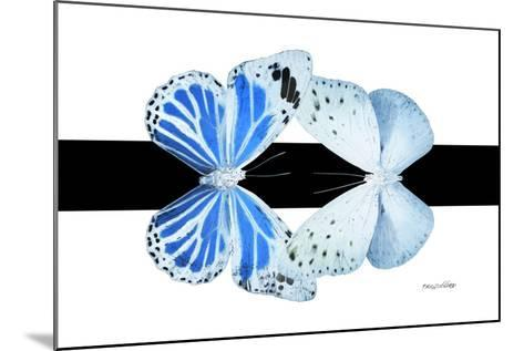Miss Butterfly Duo Salateuploea - X-Ray B&W Edition-Philippe Hugonnard-Mounted Photographic Print