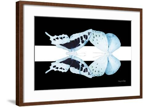 Miss Butterfly Duo Cloanthaea - X-Ray B&W Edition-Philippe Hugonnard-Framed Art Print