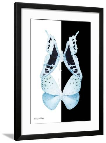 Miss Butterfly Duo Cloanthaea II - X-Ray B&W Edition-Philippe Hugonnard-Framed Art Print