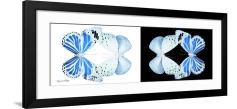 Miss Butterfly Duo Salateuploea Pan - X-Ray B&W Edition-Philippe Hugonnard-Framed Art Print