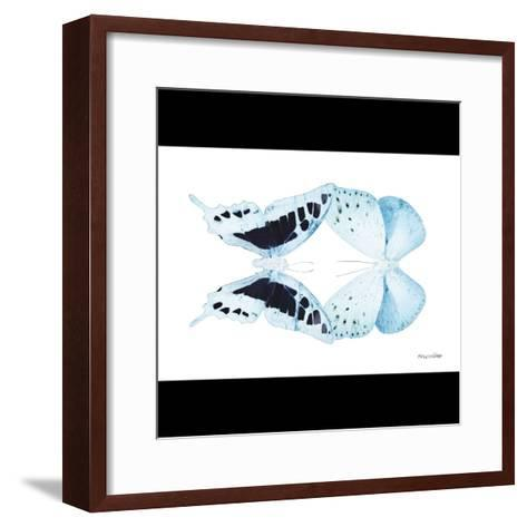 Miss Butterfly Duo Cloanthaea Sq - X-Ray B&W Edition-Philippe Hugonnard-Framed Art Print