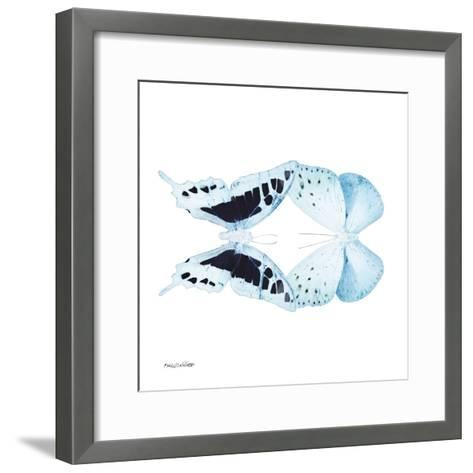 Miss Butterfly Duo Cloanthaea Sq - X-Ray White Edition-Philippe Hugonnard-Framed Art Print