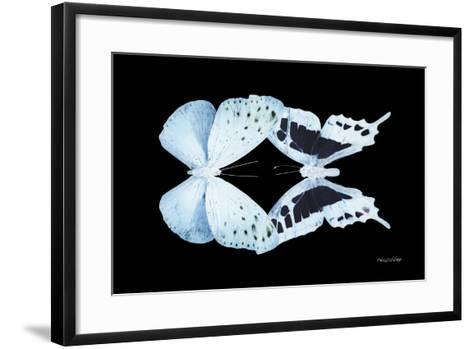 Miss Butterfly Duo Euploanthus - X-Ray Black Edition-Philippe Hugonnard-Framed Art Print