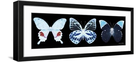 Miss Butterfly X-Ray Panoramic Black II-Philippe Hugonnard-Framed Art Print