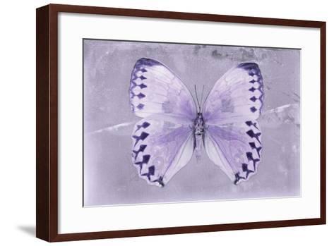 Miss Butterfly Formosana - Mauve-Philippe Hugonnard-Framed Art Print