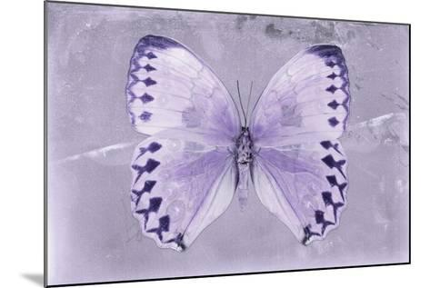 Miss Butterfly Formosana - Mauve-Philippe Hugonnard-Mounted Photographic Print