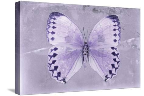 Miss Butterfly Formosana - Mauve-Philippe Hugonnard-Stretched Canvas Print