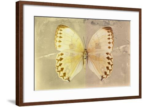 Miss Butterfly Formosana - Yellow & Dark Beige-Philippe Hugonnard-Framed Art Print