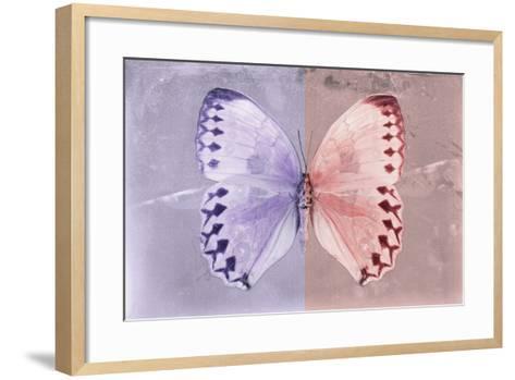Miss Butterfly Formosana - Mauve & Red-Philippe Hugonnard-Framed Art Print