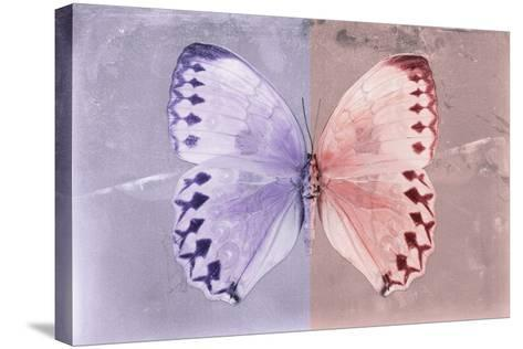 Miss Butterfly Formosana - Mauve & Red-Philippe Hugonnard-Stretched Canvas Print