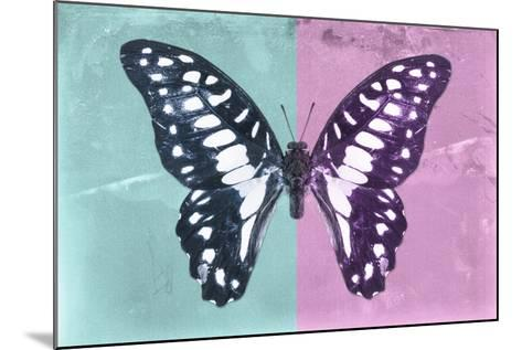 Miss Butterfly Graphium Profil - Turquoise & Pink-Philippe Hugonnard-Mounted Photographic Print